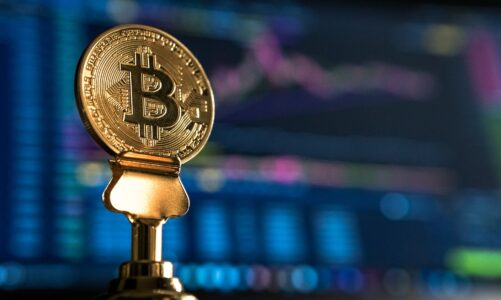 After a Week of Steep Declines, Bitcoin Bulls Are Back?
