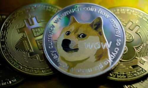 Bitcoin tycoon Novogratz warned investors not to buy Dogecoin
